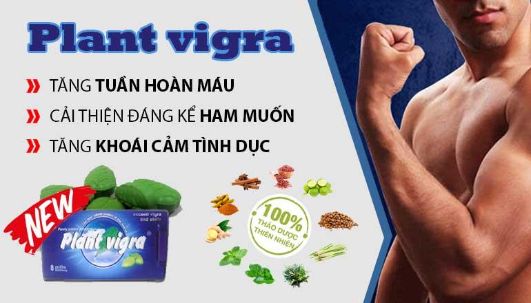 Thuốc Cường Dương Thảo Dược Plant Viagra Male Enhancement Pills 6800 mg